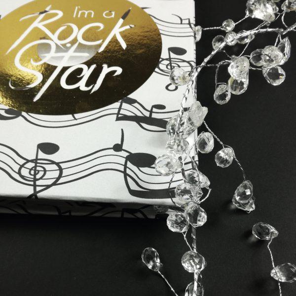 i'm a rock star Andariega Store